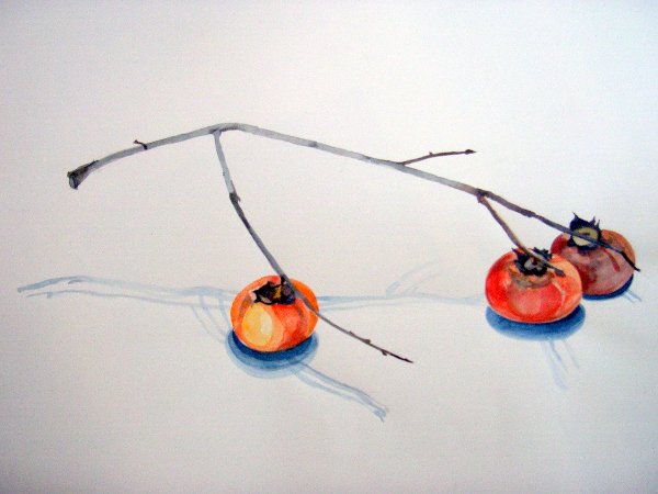 "Persimmons 22""X30"""