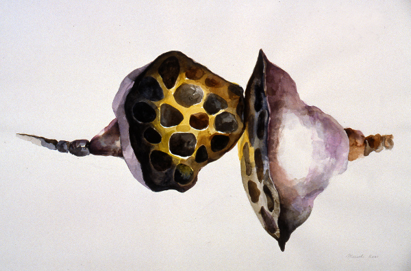 "Lotus Seed Pods 22""X30"""